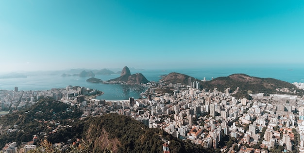 Landscape of rio de janeiro surrounded by the sea under a blue sky in brazil Free Photo