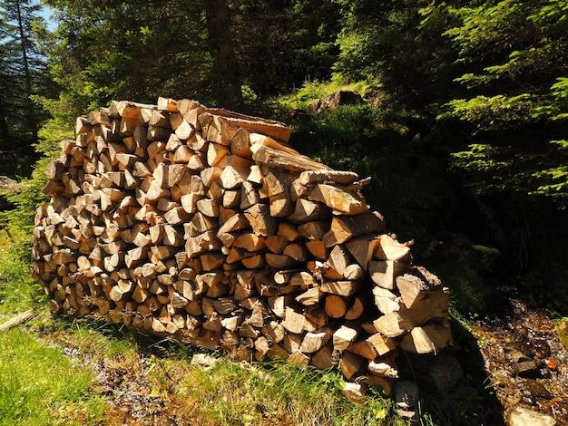 Пейзажный снимок груды рубленого леса с зелеными деревьями Бесплатные Фотографии