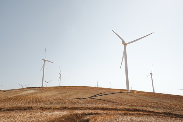 Landscape shot of white wind turbines on a peaceful dry grass field Free Photo