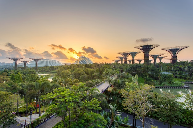 Landscape of the singapore financial district and business building Premium Photo