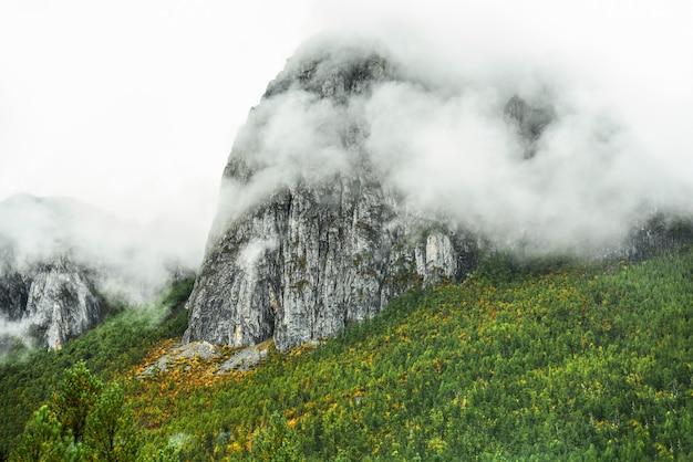 Landscape view at yading national reserve Premium Photo
