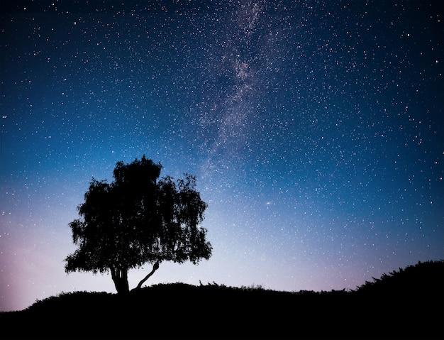밤 별이 빛나는 하늘과 언덕에 나무의 실루엣 풍경. 외로운 나무, 떨어지는 별과 은하수. 무료 사진