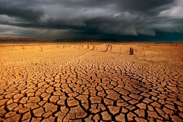 Landscape with thunder storm sky and cracked dry land Premium Photo