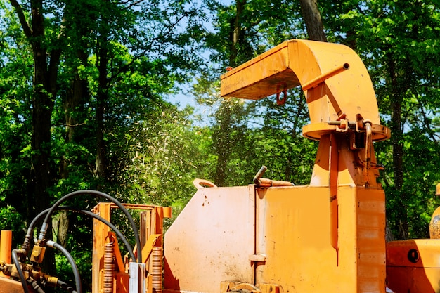 Landscapers using chipper machine to remove and haul chainsaw tree branches Premium Photo