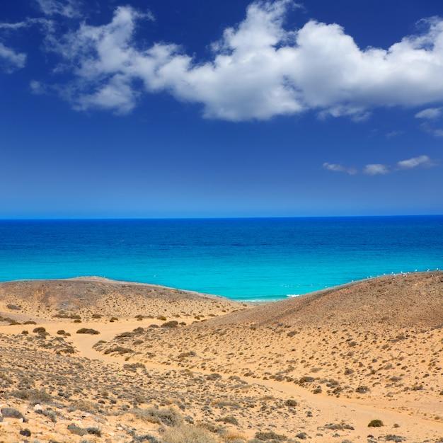 Lanzarote south punta papagayo sea in canaries Premium Photo