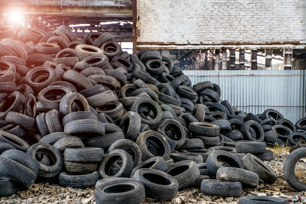 Large bunch of old black tires from different vehicles lying on the abandoned plant. Premium Photo