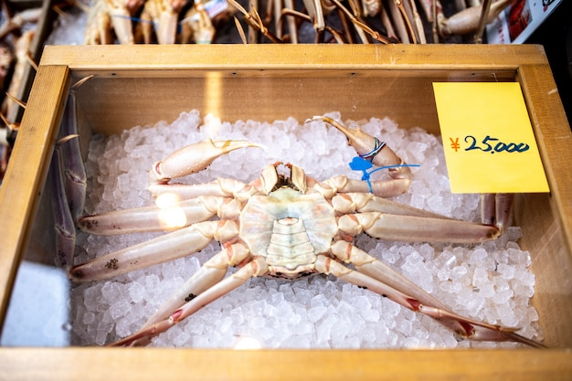 Large crabs in japan, which have a very expensive selling price. Premium Photo