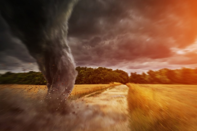 Large tornado disaster on a road Premium Photo
