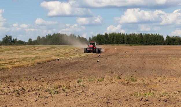 쟁기가 달린 대형 트랙터는 수확 후 밭에서 토양을 갈아서 새로운 농작물을 파종하기 위해 흰 황새가 음식을 찾기 위해 들판에 서 있습니다. 프리미엄 사진