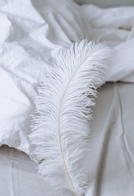 Большое белое перо на кровати. домашний комфорт Premium Фотографии