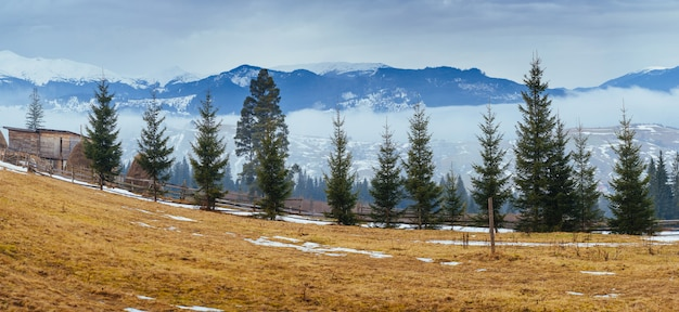 The last days of winter in the mountains of ukraine, thick fog. carpathians. Premium Photo