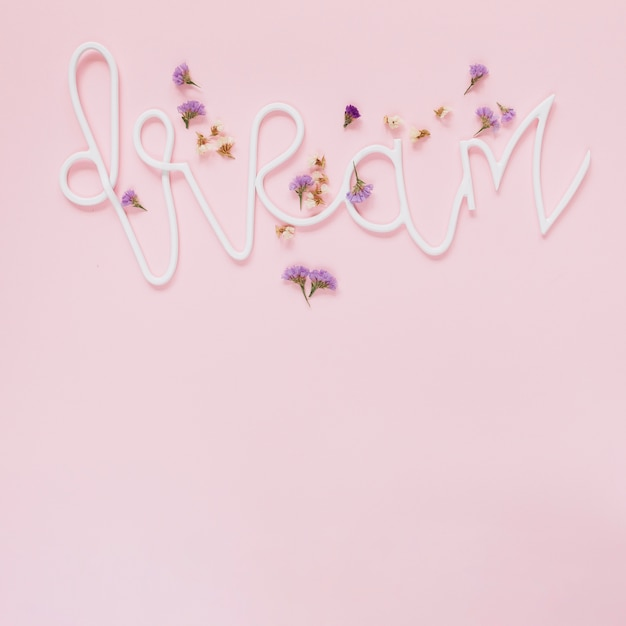 Lavender and white flowers on dream text over the pink background lavender and white flowers on dream text over the pink background free photo mightylinksfo