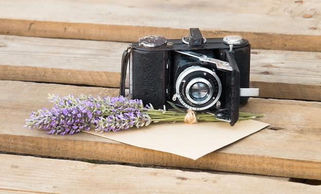 Lavender and camera. Free Photo