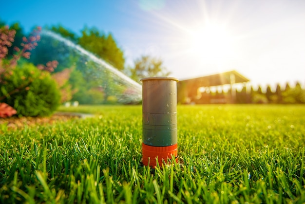 Lawn sprinkler in action Free Photo