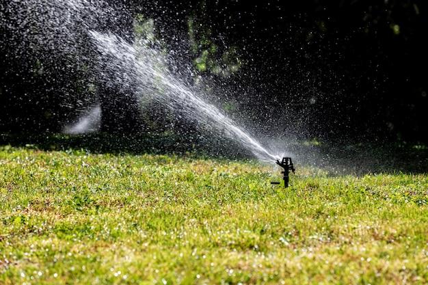 Lawn water sprinkler spraying water over Premium Photo