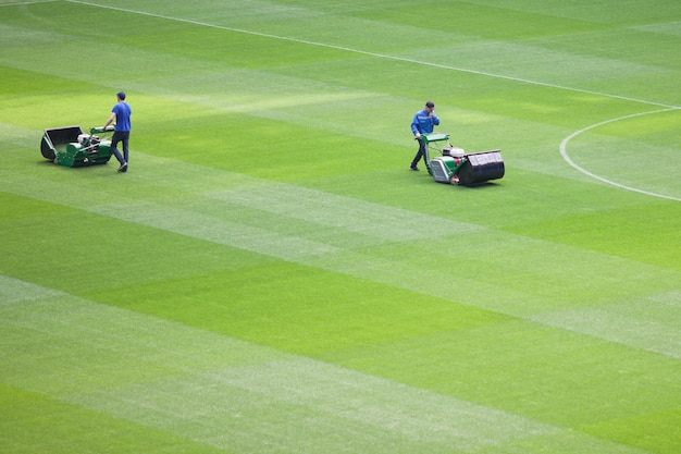 The lawnmower man mows the lawn in a football stadium. Premium Photo