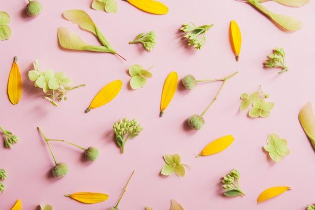 ピンクの花のテーマに花びらと植物パターンのレイアウト Premium写真