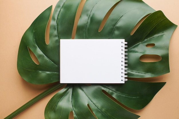 Layout of a piece of paper on a palm leaf with space for text. summer theme. flat lay. Premium Photo