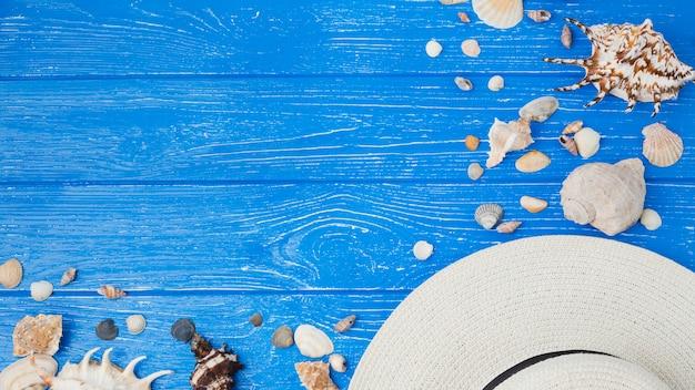 Layout of seashells and hat Free Photo