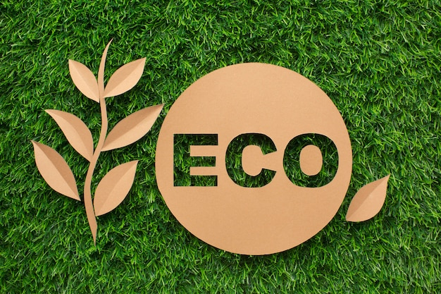 Leaf and ecology sign on grass Premium Photo
