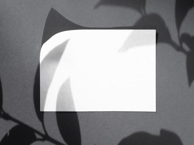 Leaf shadows on a white blanket Free Photo