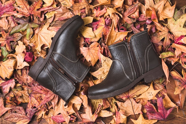 Leather boots on dry leaves background Free Photo