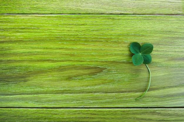 녹색 나무 배경에 클로버를 남겨주세요. 인사말 행복 네 잎 클로버. 행운의 개념. 패트릭 데이 기호. 프리미엄 사진