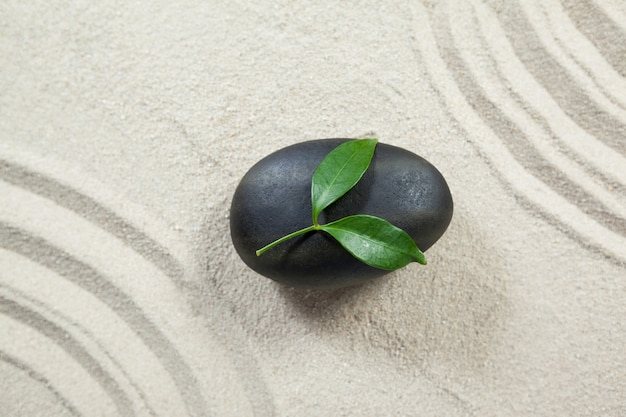 Leaves on black pebble stone Free Photo
