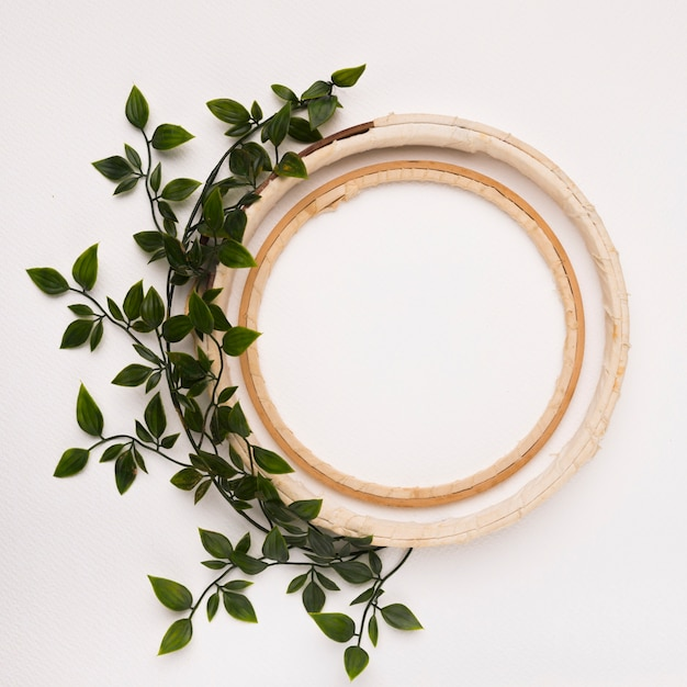 Leaves decoration with an empty wooden circles on white backdrop Free Photo