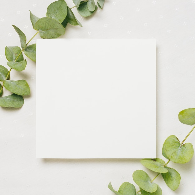 Leaves twigs on the corner of white wedding card against backdrop Free Photo