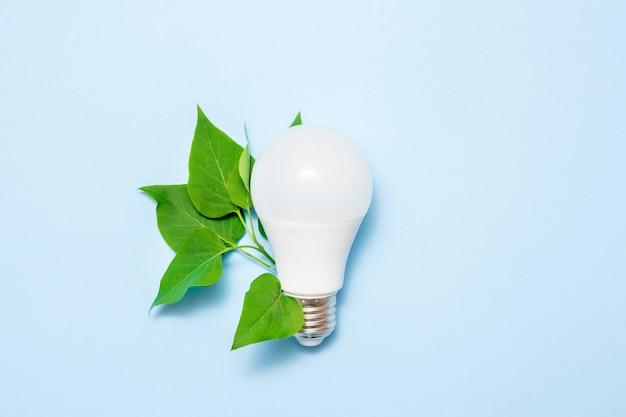 青色の背景に葉を持つledランプ Premium写真