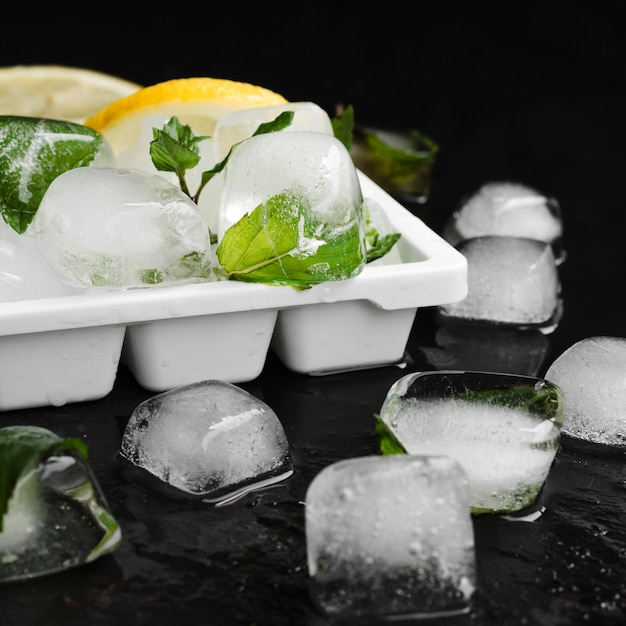 Lemons with mint and ice cubes in tray Free Photo