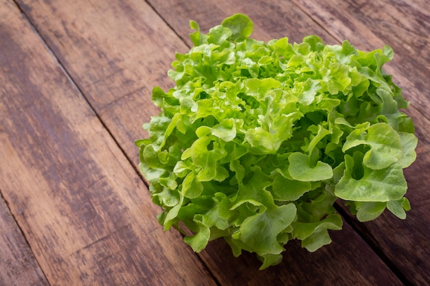 Lettuce  that is placed on a brown wooden floor. Free Photo