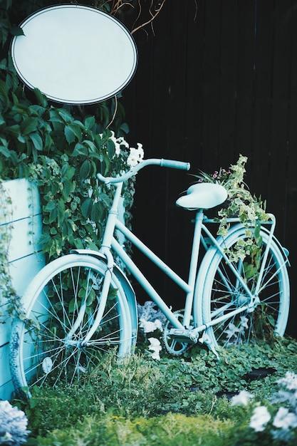 Bicicletta blu chiaro vicino alle piante verdi Foto Gratuite