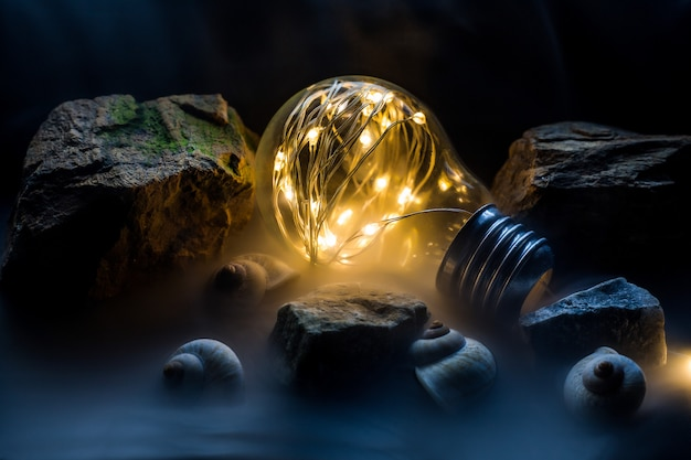 Light bulb fantazy, light bulb in hand, light bulb and bokeh Premium Photo