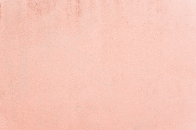 Light pastel pink texture wall background Free Photo