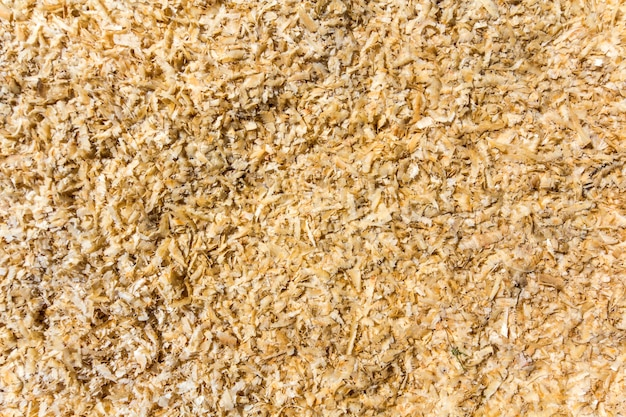 Light soft yellow brown natural bark wooden chips, recycled material surface. Premium Photo