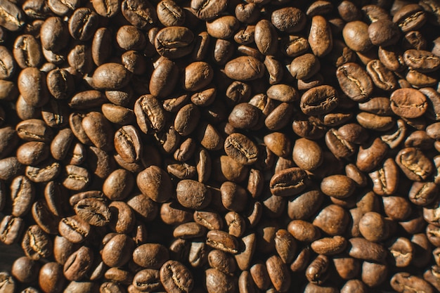 Lightly roasted coffee beans aerial 449 19325928