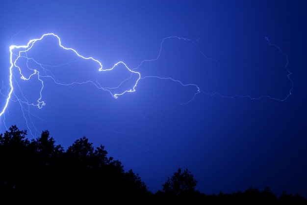 Lightning against a blue night sky above the trees. Premium Photo