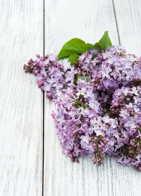 Lilac flowers Premium Photo