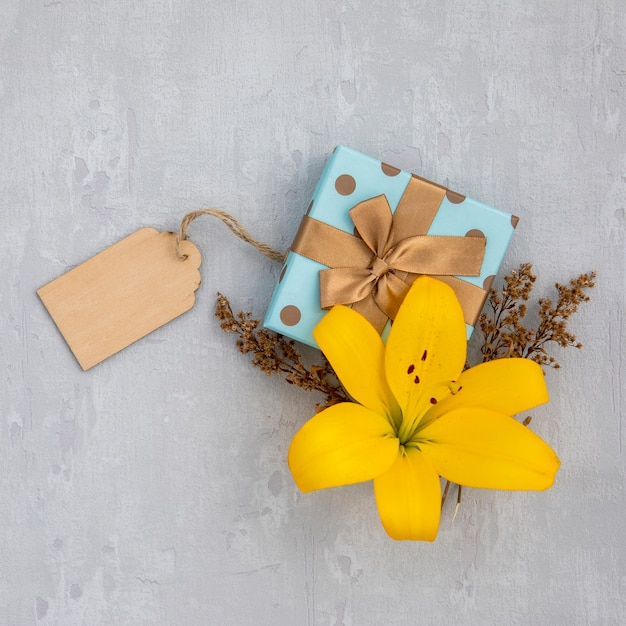 Lily flower with cute wrapped gift Free Photo