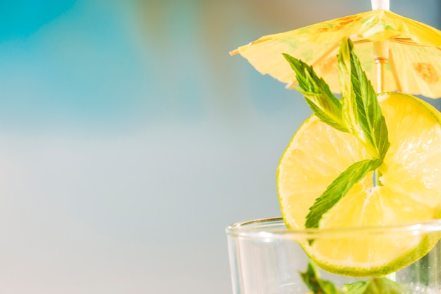 Lime slice with peppermint leaf under umbrella Free Photo