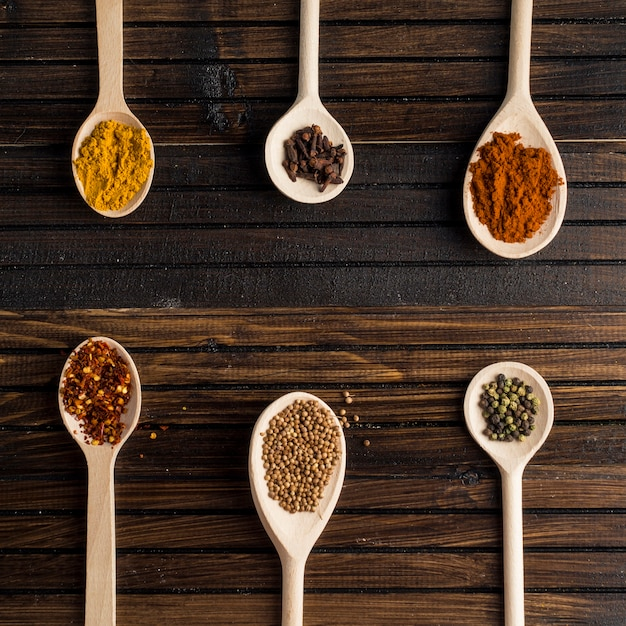 Lines of spoons with spices Free Photo
