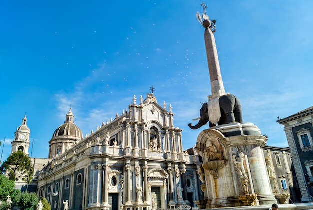 Liotru and cathedral in catania, sicily Premium Photo