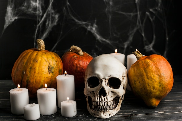 Lit candles with pumpkins and skull Free Photo