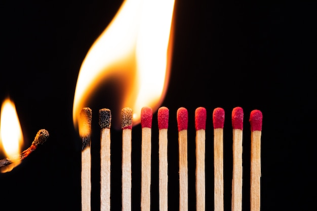 Lit match next to a row of unlit matches. the passion of one ignites new ideas Premium Photo