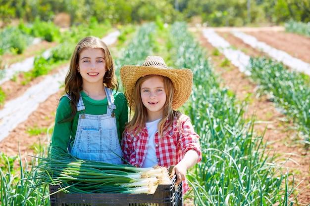 Litte kid farmer girls in onion harvest orchard Premium Photo