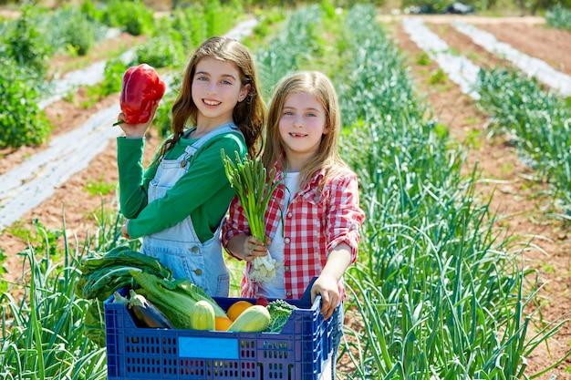 Litte kid farmer girls in vegetables harvest Premium Photo