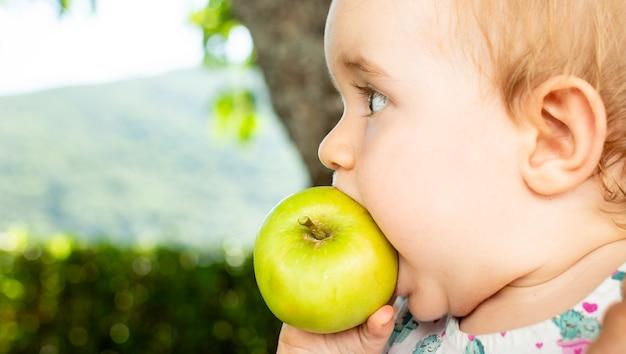 Little baby eating apple Premium Photo