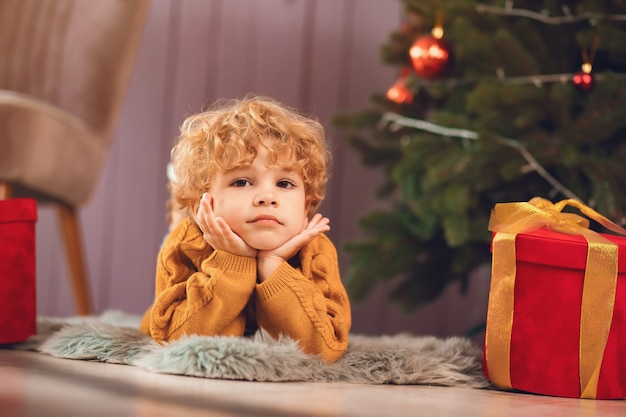 Little boy near christmas tree in a brown sweater Free Photo